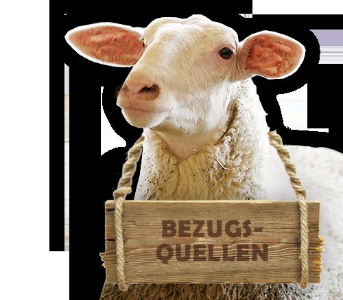 Schaf Portrait aus der Bio-Schafzucht Hautzinger